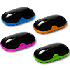 CANYON Bright Colored Mice
